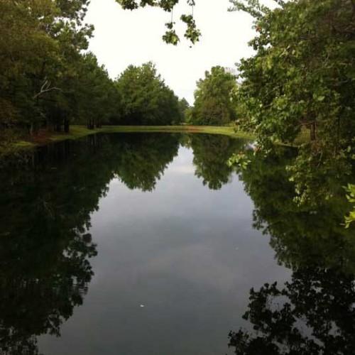 lake-photo