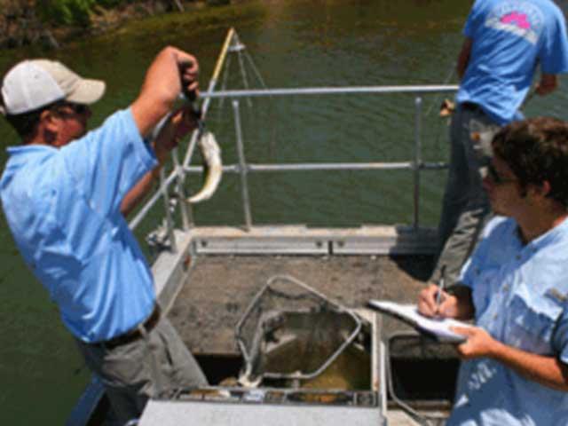Post-What-is-Electrofishing