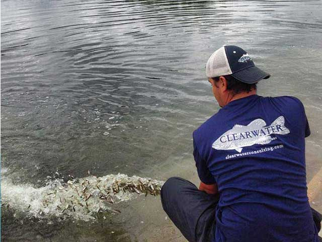 Fish Stocking - Clear Water Consulting