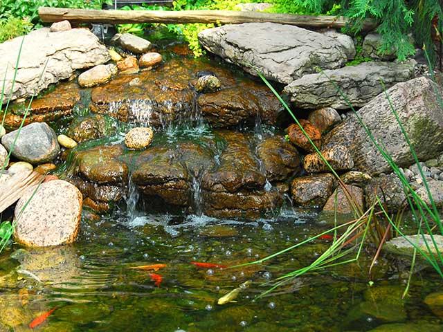 Ornamental Fountains Pond