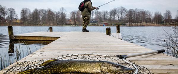 fishing in spring